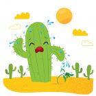 第410期:仙人掌和含羞草