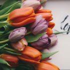 爱,一直都在(04.06.17)