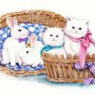 第418期:秀妮的波斯猫