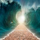 过红海的小争议(15.10.17)