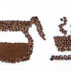 会唱歌的咖啡(08.10.17)