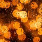 雨水不要下(26.11.17)
