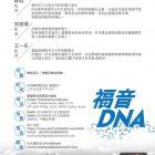 """""""福音DNA""""讲座"""